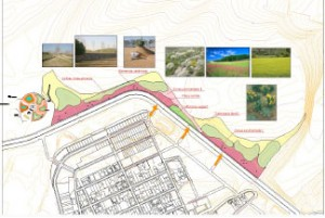 Designs for the Philip VI Forest Park in Valdebebas