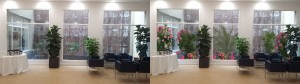 Diseño de Interiorismo con planta, y simulación de Patio Exterior, en el Colegio de Farmacéuticos de Madrid